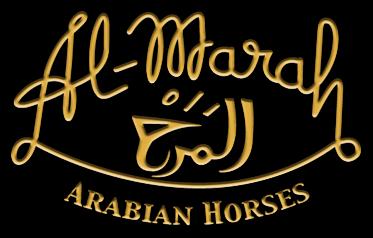 Al Marah Arabian Horses